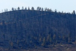 Aftermath of High Park wildfire, Colorado, 2012